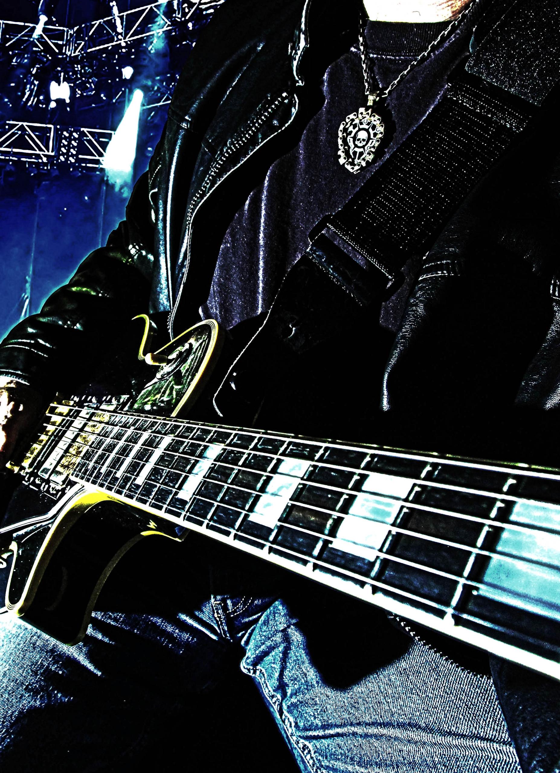 Tantris Guitar Pick Holder Pendant
